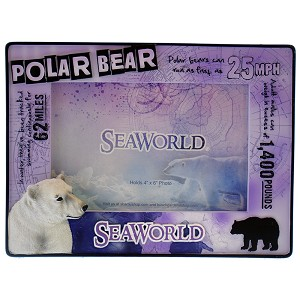 SeaWorld Picture Frame - Educational Design - Polar Bear