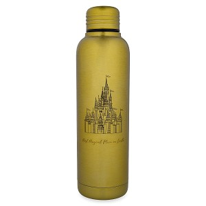 Disney Metal Water Bottle - Cinderella Castle - Most Magical Place on Earth