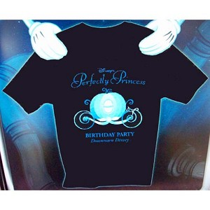 Disney Adult Shirt