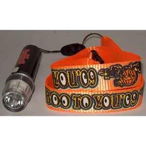 Disney Pin Lanyard - Mickey's Not So Scary Halloween Party 2009