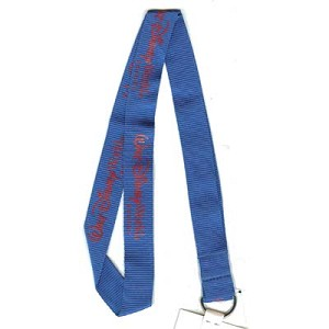 Disney Lanyard - Blue and Red - Walt Disney World Resort Logo